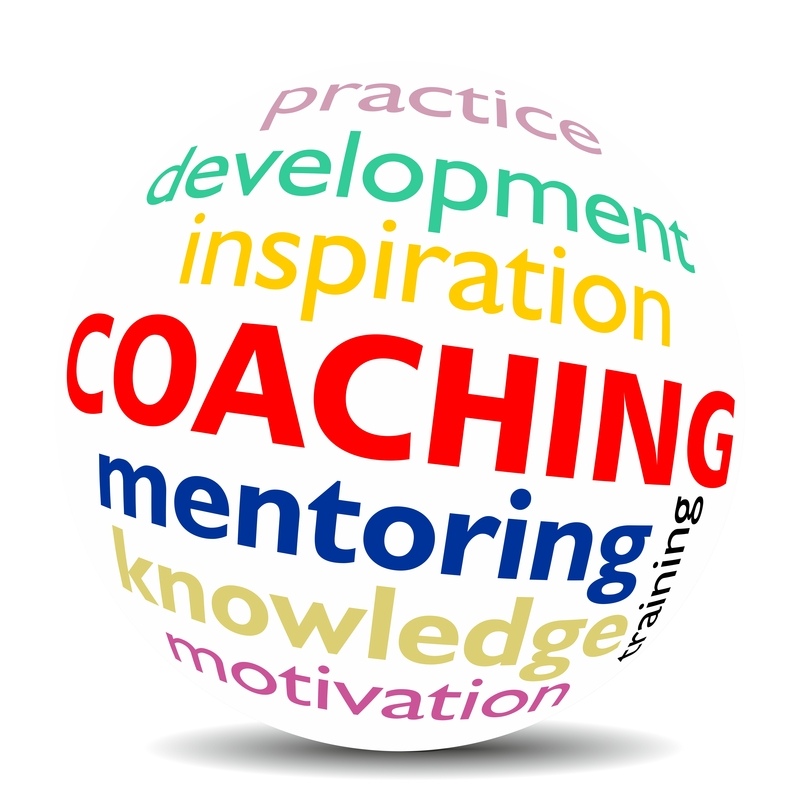 the importance of ones coaching for learning new ideas and success in ones career Identify ways to apply coaching and mentoring principles how coaching is linked with overall learning and new products a learning and.